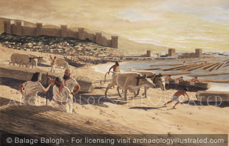 Byblos Harbor, Phoenicia, Cedar Timber Hauled to Shore - Archaeology Illustrated