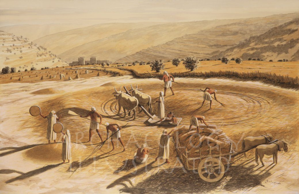 Jerusalem , Arauna's Threshing Floor on the Temple Mount Which King David Would Purchase to Build an Altar to God. Late site of the Altar of the Temple of Solomon - Archaeology Illustrated