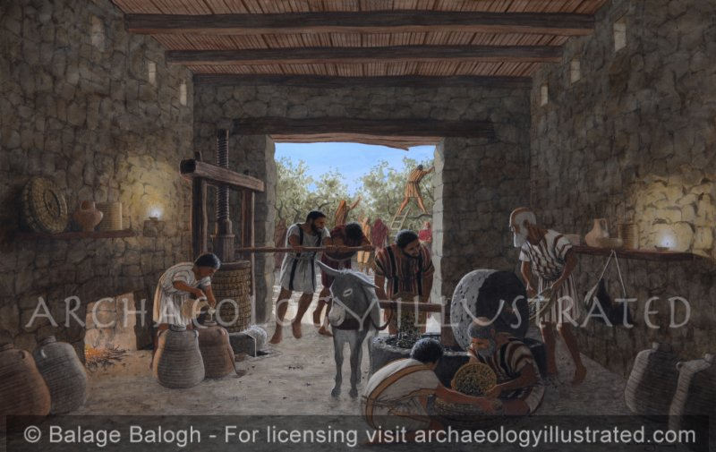 Katzrin, Golan Heights, A Family of Olive Oil Pressers, Byzantine Period - Archaeology Illustrated