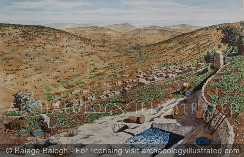 Nazareth, Jesus's Hometown, with Rock Carved Depression for Treading Grapes, Looking Southeast, 1st century AD - Archaeology Illustrated